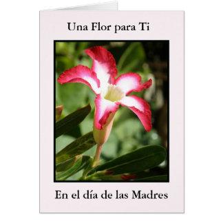 Dia de Las Madres Una flor para ti Card