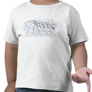 Diagram of a mechanical wing shirts
