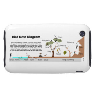 Diagram of Various Bird Nests iPhone 3 Tough Cover