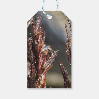 Diamond trees gift tags