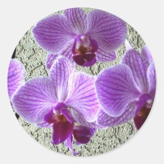 Diane's Orchids Envelope Seal/Sticker Round Sticker