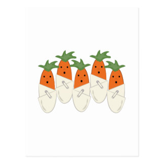 Diapered Carrots Post Card