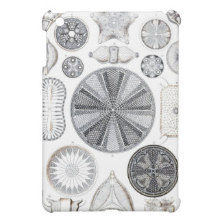 diatom ipad case
