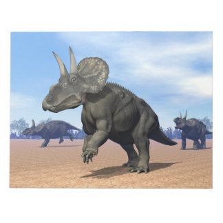 Diceratops/nedoceratops dinosaurs in the desert notepad