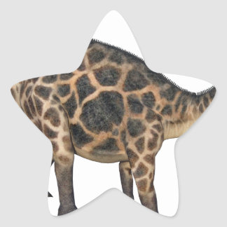 Dicraeosaurus In Side Profile Star Sticker