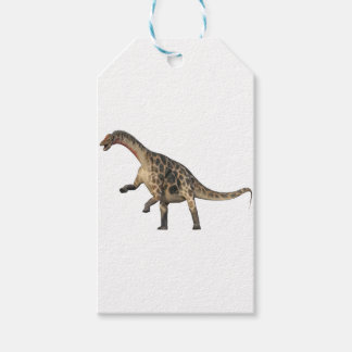 Dicraeosaurus Standing Gift Tags
