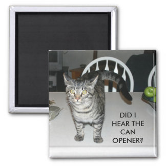 DID I HEAR THE CAN OPENER? SQUARE MAGNET