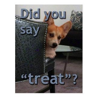"""Did you say 'treat'?"" Corgi Card Postcard"