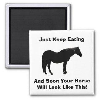 Diet Encouragement Horse Magnet