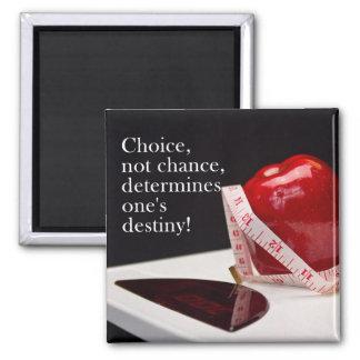 Diet Encouragement Magnet