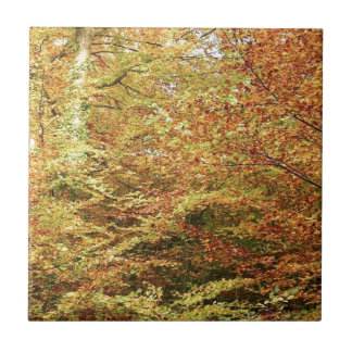DIFERENT COLORS OF AUTUMN SMALL SQUARE TILE