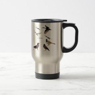 different kind of birds mug