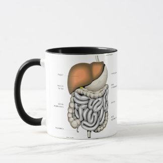 Digestive Organs Mug
