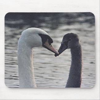 Digital enhanced swans mouse pad