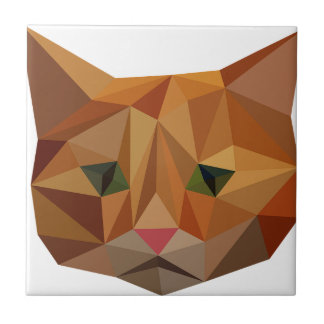 Digital Kitty Small Square Tile