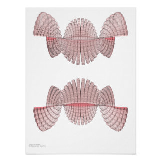 Digital Wave - Programmatic Expression Poster