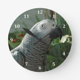 Dignified African Grey Parrot Clock