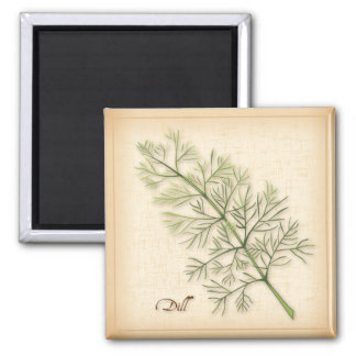 Dill Herb, Dill Weed Magnet