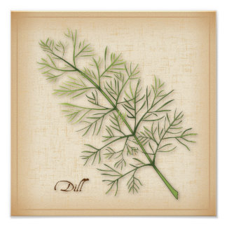 Dill Herb, Dill Weed Poster