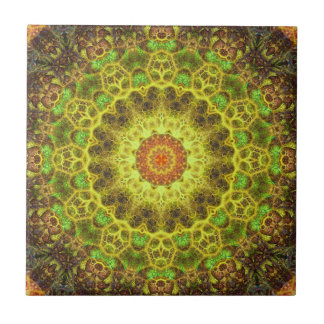 Dimensional Transition Mandala Tile