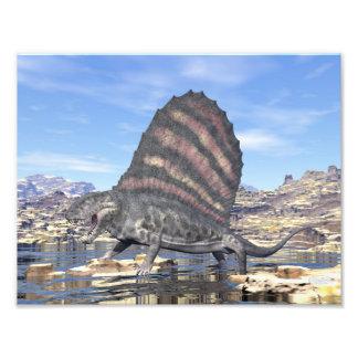 Dimetrodon standing in a pond in the desert photo print