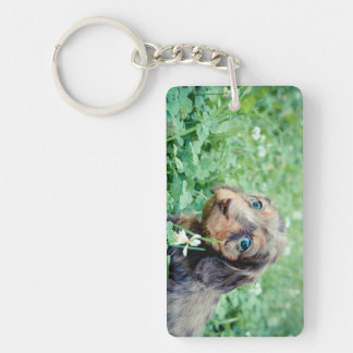 Dinah & Littermates Double Photo Keepsake Key Ring