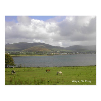 Dingle Bay, Co. Kerry Postcard