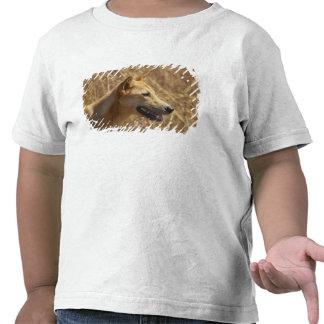 Dingo Canis lupus dingo T-shirt