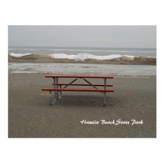 Dining Alone Postcard