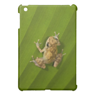 Dink frog (Eleutherodactylus diastema) on a leaf Cover For The iPad Mini