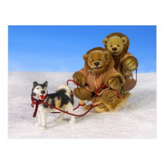 Dinky Bears on Dog Sled Postcard