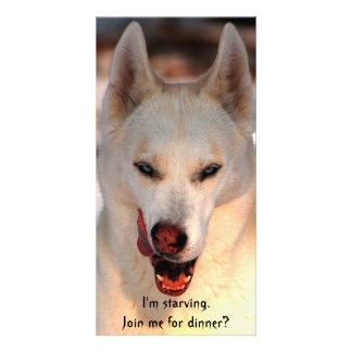 Dinner invitation (humorous) customized photo card