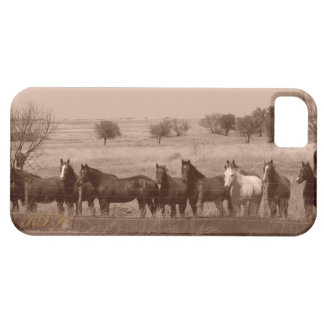 Dinner Time iPhone 5 Covers