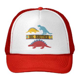 Dinosaur Big Brother Mesh Hats