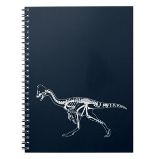 Dinosaur, Dino, Saurus Skeleton Illustration Notebook