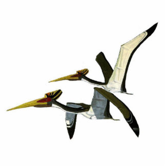 Dinosaur Photo Sculpture Pterosaurs Gregory Paul