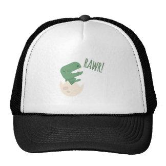 Dinosaur Rawr Cap