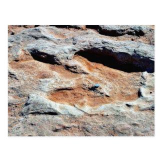Dinosaur Tracks North Of Flagstaff Postcard