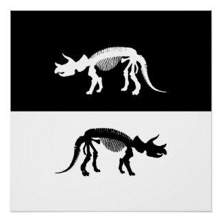 Dinosaur (Triceratops) Skeleton