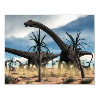 Diplodocus dinosaurs herd in the desert photo print