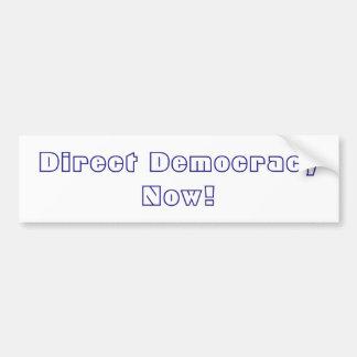 Direct Democracy Now! Bumper Sticker