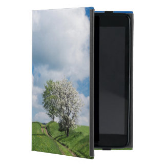 Dirt Road and Apple Trees Case For iPad Mini