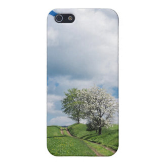 Dirt Road and Apple Trees Case For iPhone 5/5S