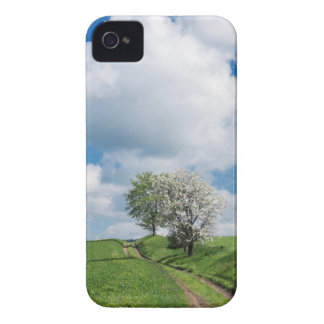 Dirt Road and Apple Trees Case-Mate iPhone 4 Case