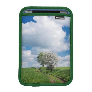 Dirt Road and Apple Trees iPad Mini Sleeve