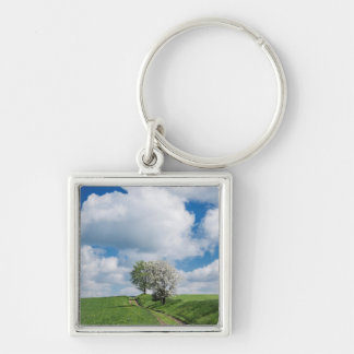 Dirt Road and Apple Trees Silver-Colored Square Key Ring