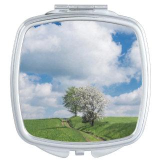 Dirt Road and Apple Trees Vanity Mirror