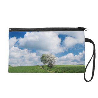 Dirt Road and Apple Trees Wristlet Clutches