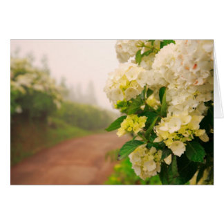 Dirt road and hydrangeas card