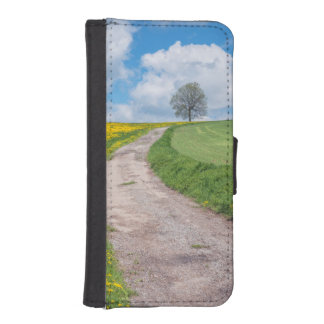Dirt Road and Tree